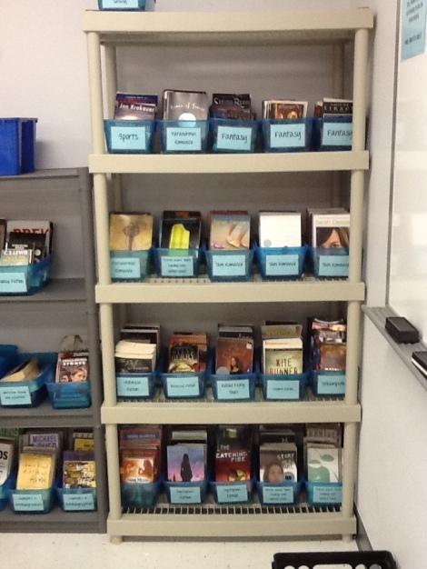 Classroom Library Tall Shelf